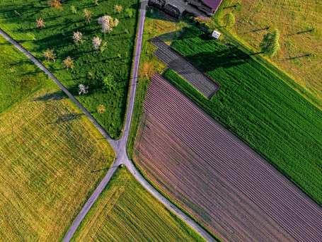 Can Agricultural Farm Land Be Used In A 1031 Exchange?