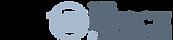 logo_BVV.png