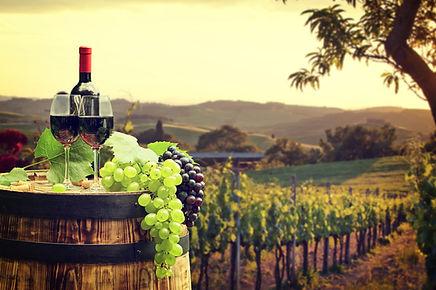 Monday Night Travel with Rick Steves: Great Italian Wine Experiences