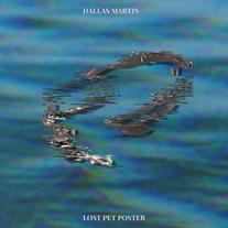 Dallas Martin - Lost Pet Poster