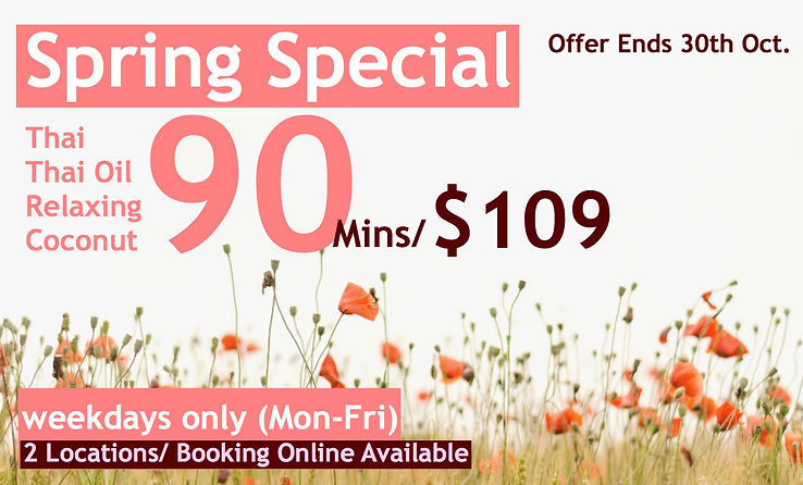 special price thai massage discount