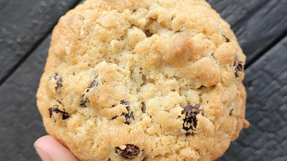 Raisin & Oat Cookie