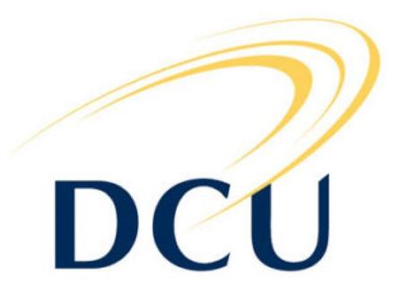 DCU CTY Ireland Summer Programme Scholarship