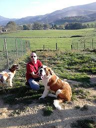 pension canine familiale sans box dax mont-de-marsan