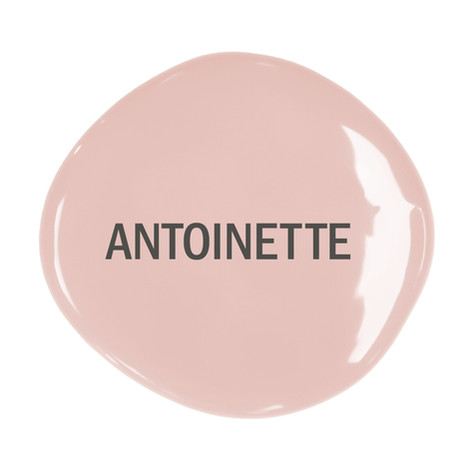 Chalk-Paint-blob-with-text-Antoinette-1.