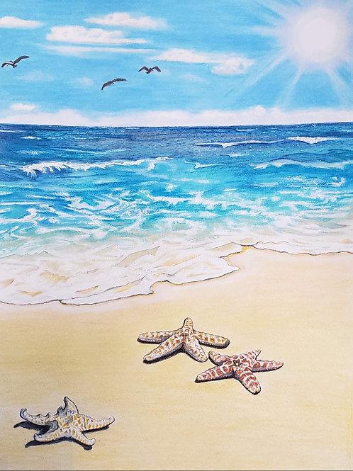 Starfish by Seashore Canvas Print