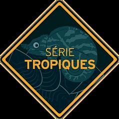 SERIE TROPIQUES-losange.png