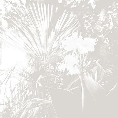 IMG_0815-BIS.jpg