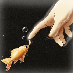 touchdfish