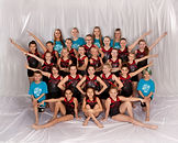 2018-19 Showteam - Blue.jpg