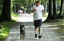 éducateur canin à domicile (76), Freddy Bréant BENE CANE