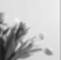 Screen Shot 2020-05-05 at 9.50.51 PM.png