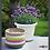 Thumbnail: Plato Medea 30 Color Marfil