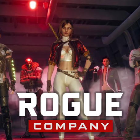 What is Rogue Company?