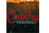 Country Trends Store