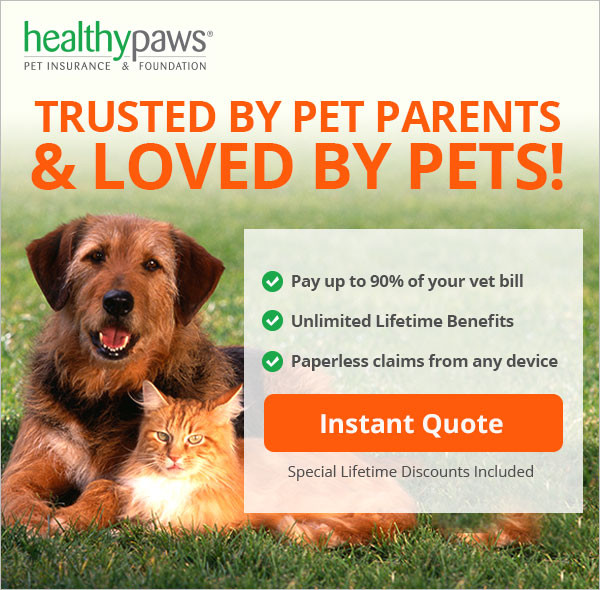 Consumer Advocate is an independent review organization who ranked Healthy Paws the #1 pet insur