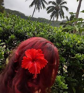 hair, red hair, colour, keratin, Rarotonga, hairdresser, make up