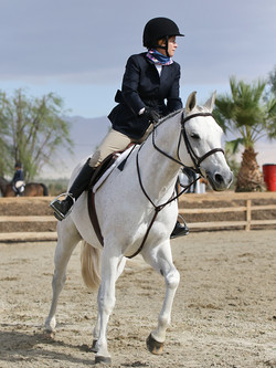 Thermal Horse Show Adult