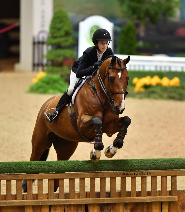 Junior rider at indoors
