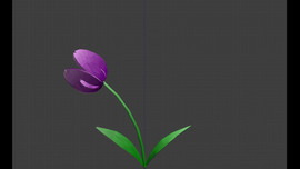 flower animations.mp4