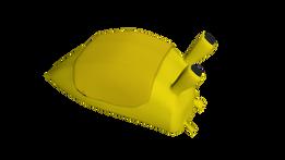 bananaslug.png