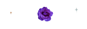 flower-transparent-purple-smaller-transp