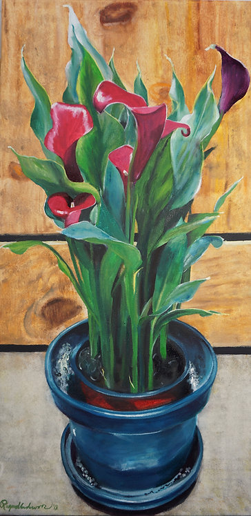 Calla Lilies in Teal Pot