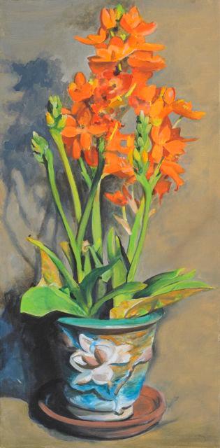 Orange Star Lillies