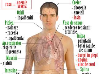 Studiu-Legătura dintre Anemie și Hipotiroidism