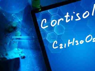 Cortizolul și Ritmul Circadian