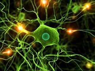 """""""Biologia Moleculară a Celulei"""""""