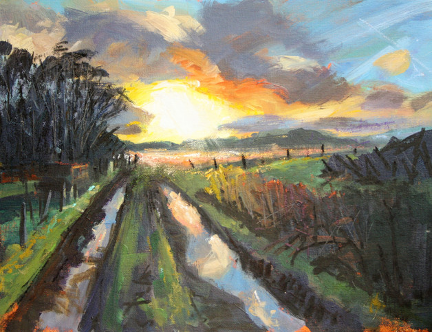 Sunset on the allotments.JPG