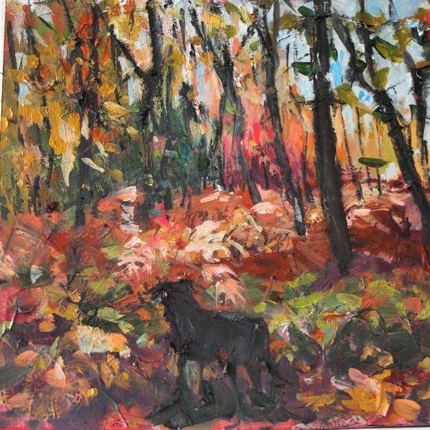 Autumn Wonder.jpg