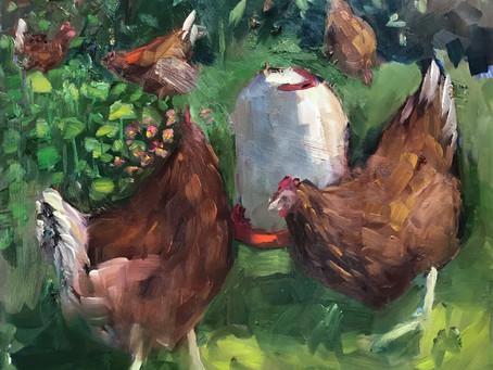 Pleinair Chickens