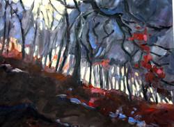 Marlow Common Winter morning