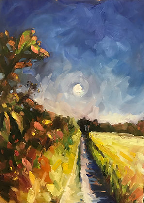 Chalk Path to the Moon