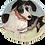 Thumbnail: Bowl of Dogs