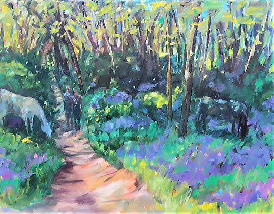 Walking through Bluebells