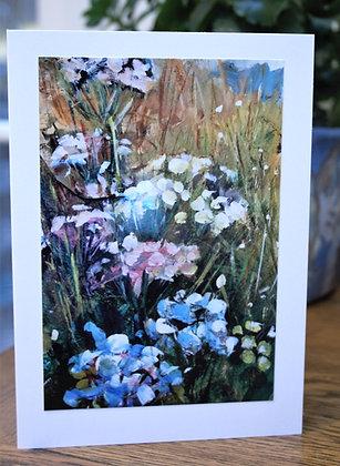 Wild Field Flowers