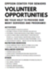 Volunteer Opportunities Sheet.PNG