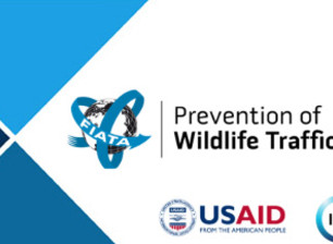 Preventing Wildlife Trafficking