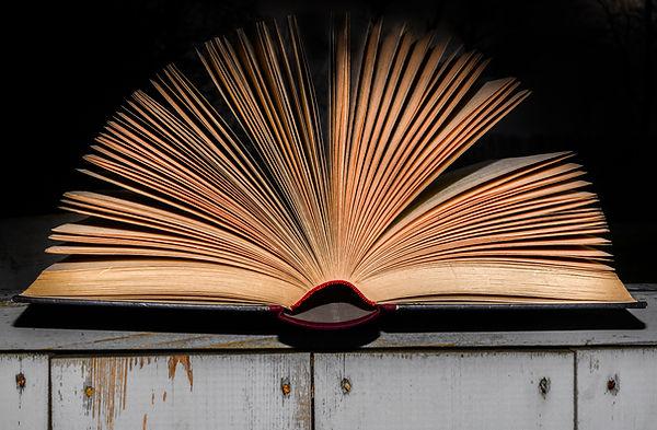 antique-book-book-bindings-1005324.jpg