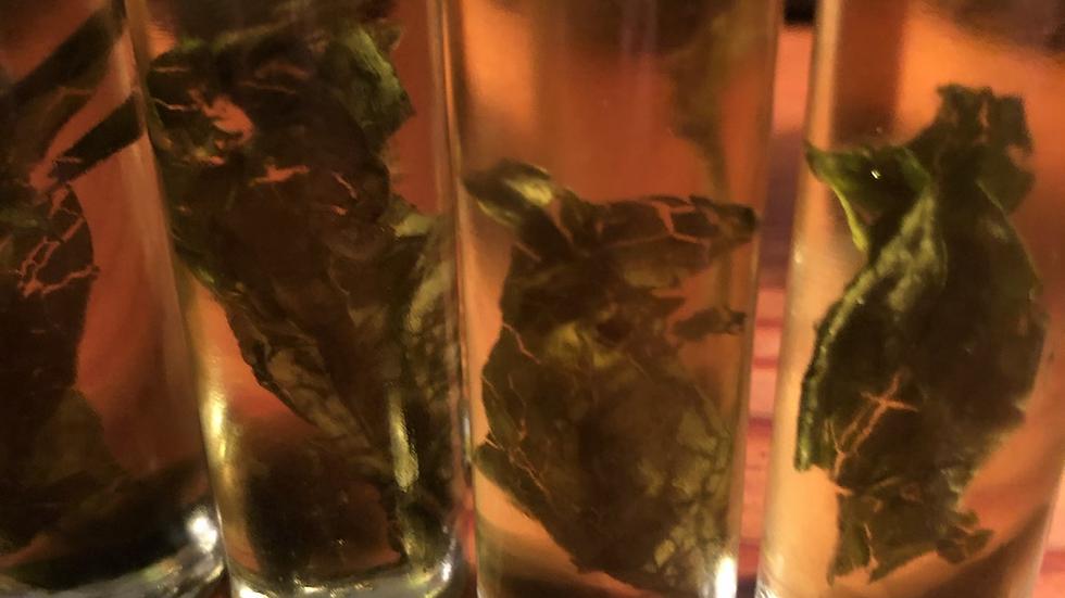 Moldavite infused Spiritual Traveler Oil
