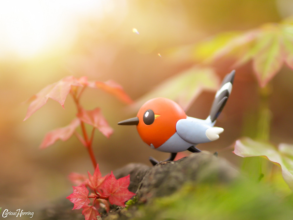 Fletchling Pokemon Toy Photography