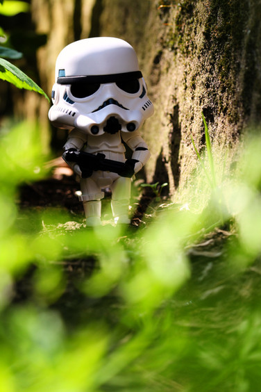 Lost Storm Trooper