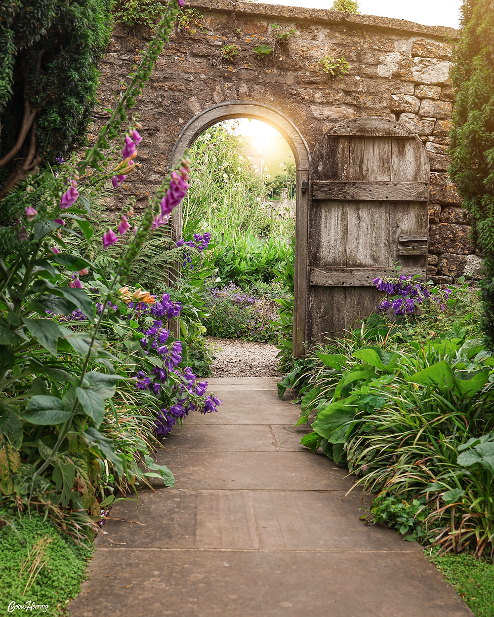 A small wooden door sits buried in the walled secret gardens of Snowshill Manor, Cotswolds.