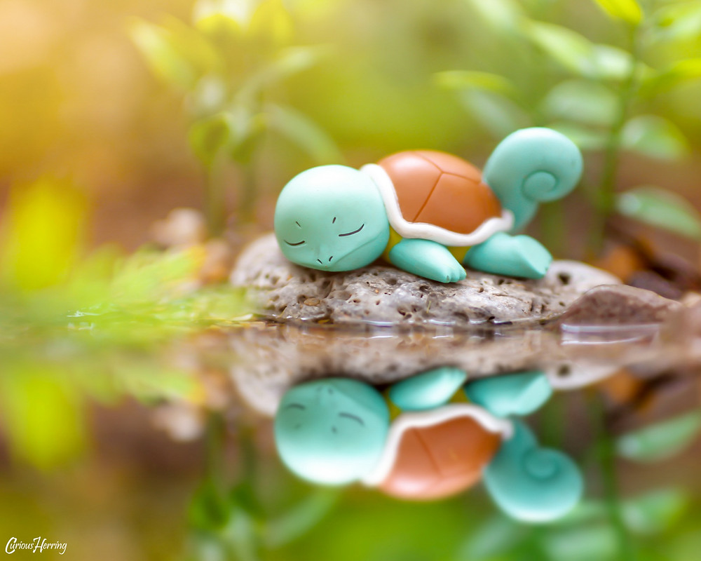 Toy photography of Sleeping Squirtle from Pokemon Gashapon figure. Squirtle sleeps by the waterfront.