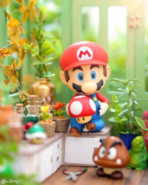 Green House Mushrooms