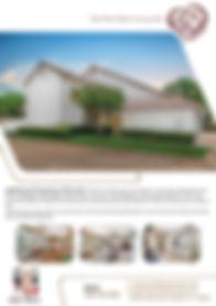 DallasPro - Flyer_-2.jpg