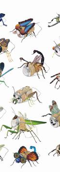 5. 9 Kurk als insect.jpg